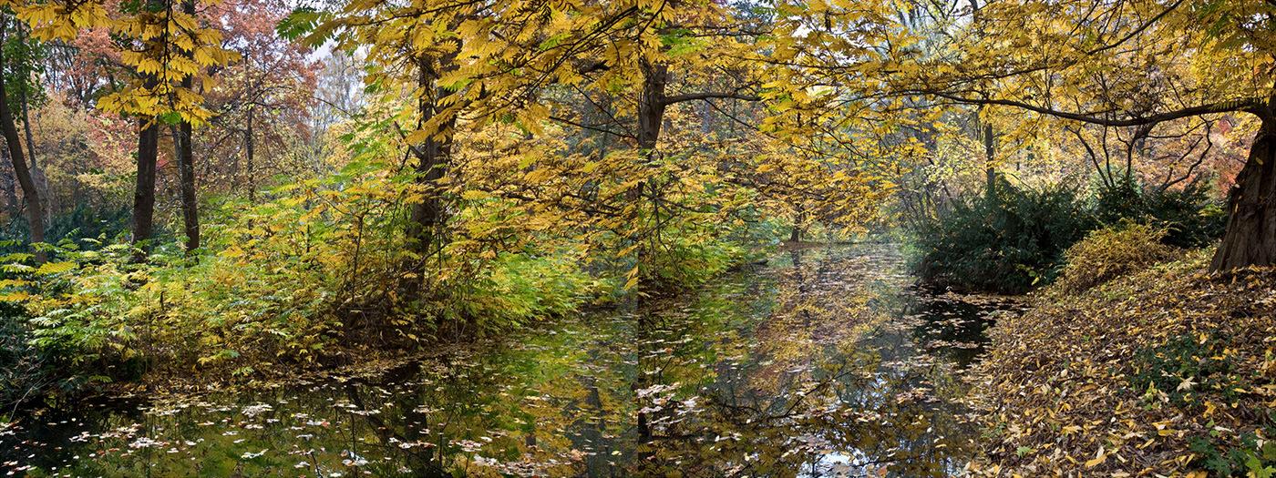 Tiergarten un jard n rom ntico alem n amparo garrido for Jardin romantico